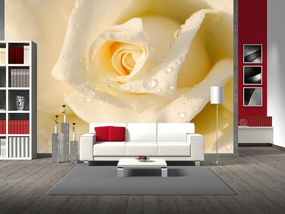3д обои белая роза