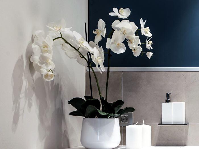 белая орхидея цвето фото для ванной
