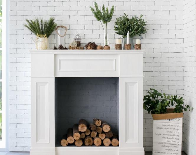 Растения нав камине