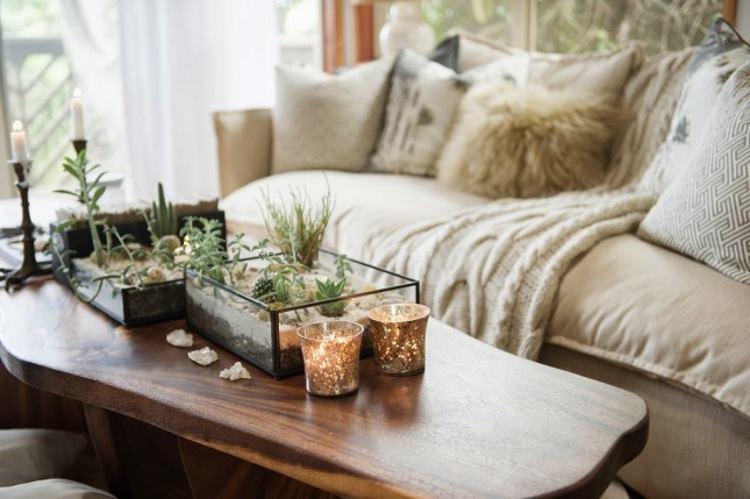 Кактусы на стол. фото